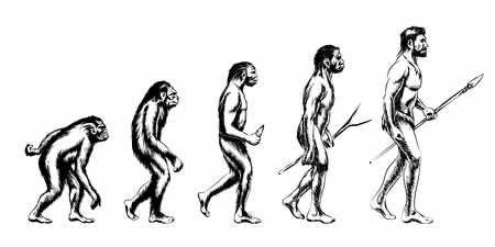 evolution-weight-loss
