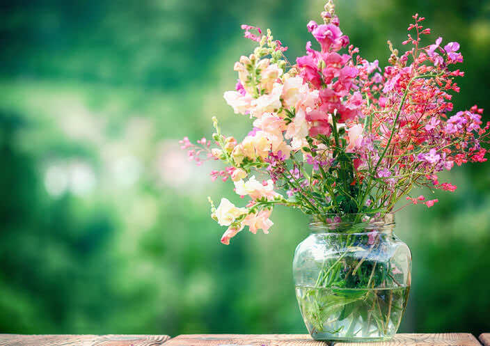 hay-fever-avoid-fresh-flowers